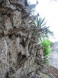Parque-de-la-paz-managua